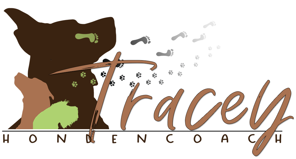 Logo Hondencoach Tracey footer